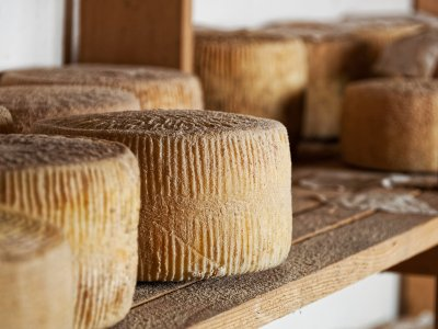 Try cheese pecorino on Sardinia