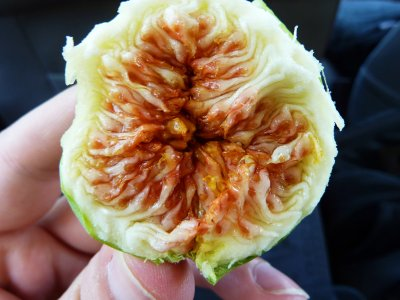 Eat figs on Crete