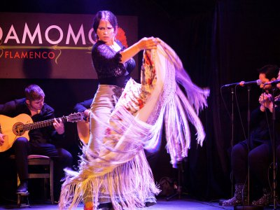 See flamenco in a tablao in Madrid