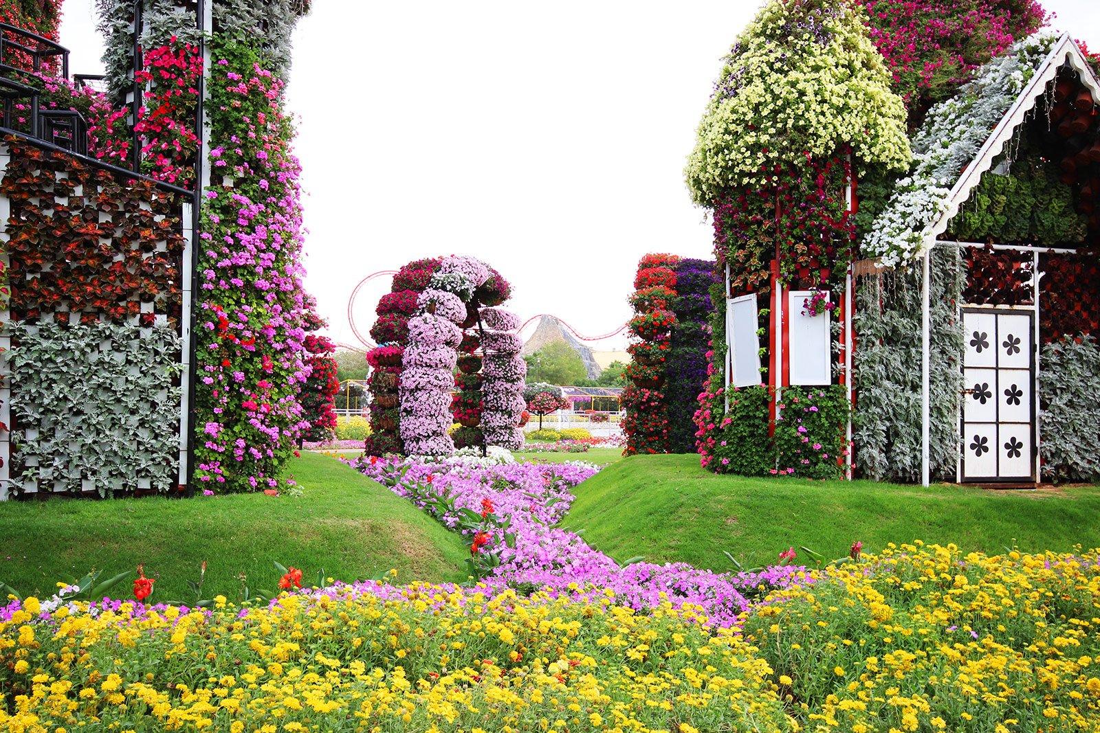 dubai miracle garden dubai