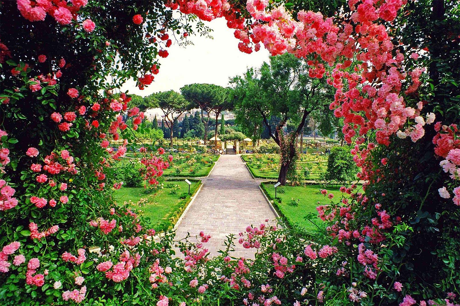 где подлинные розовый сад картинки лгал, она