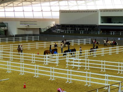 HoofbeatZ horse club in Dubai