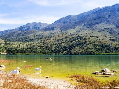 Kournas lake on Crete